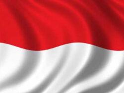 Indonesia raises 6.6 trln rupiah from Islamic bonds auction, below target