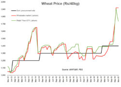 Wheat: time to bet on decline?