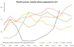 Poultry prices: what next?