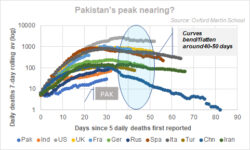 Can Pakistan peak at 1000-1200 deaths?