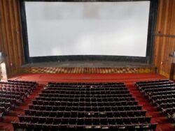 With empty cinemas, Bollywood will take years to recover from coronavirus